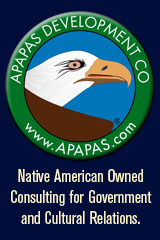 NATIVE AMERICAN INDIAN OWNED BUSINESS